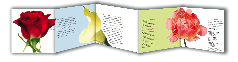 erica horstmeyer writer brochures teleflora recruitment brochure